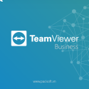 Teamviewer Business (Subscription)