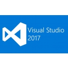 Microsoft Visual Studio Professional