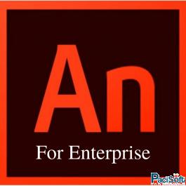 Adobe Animate CC for Enterprise (Thuê bao 1 năm)