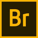 Adobe Bridge CC for Enterprise