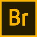 Adobe Bridge CC for Team
