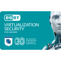 ESET Virtualization Security (per Host)