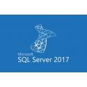 Microsoft SQL Server Standard 2017 (SNGL OLP NL (228-10344))