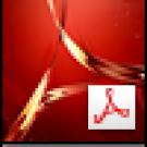 Adobe Acrobat DC Pro (Pepertual)